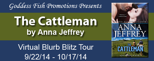 Good Morning! I'm pleased to have Anna Jeffrey and her book The ...